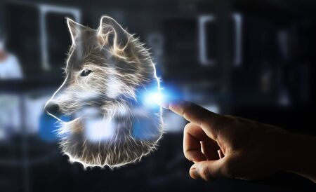 Person touching with his finger fractal endangered wolf illustration 3D rendering Stock Photo