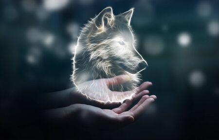 彼の手フラクタル絶滅危惧狼図 3 D レンダリングで保持している人