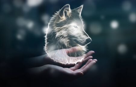 Person holding in his hand fractal endangered wolf illustration 3D rendering Stock Photo