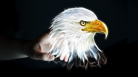 Person touching with his finger fractal endangered eagle illustration 3D rendering