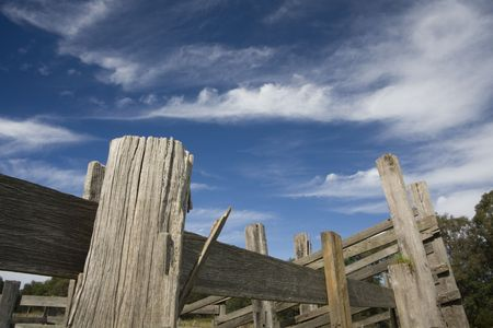 dry cow: Old wooden stockyard fence with blue sky and clouds