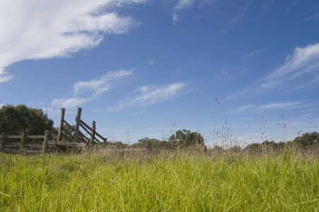 Old stockyard amidst overgrown grass with blue sky and clouds photo
