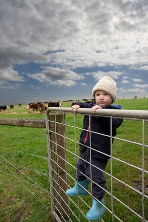 Farm boy on gate with cows and fields on top of hill on a cold day Stock Photo