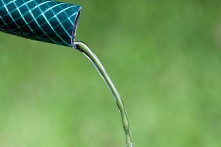 hose: Detalle de agua que se ejecuta desde la manguera de jard�n con fondo verde