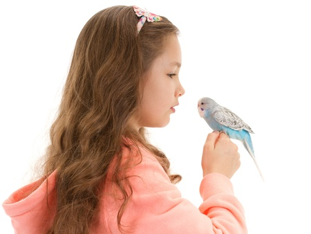 budgie: Girl speaking to tame pet bird budgerigar sitting on finger. Isolated on white.