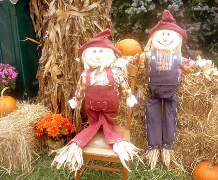 pumpkin patch: Halloween Decoration with Scarecrows