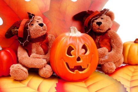 Halloween pumpkin and two teddy bears Stock Photo - 5310388