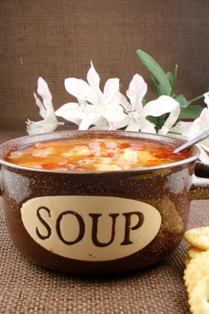 Bowl of vegetable beef soup with flowers in background Stock Photo - 6050152