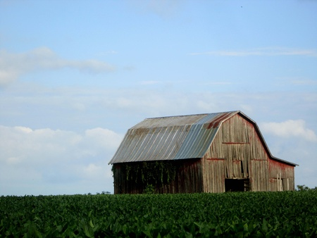 tin: Old weathered barn on hill Stock Photo