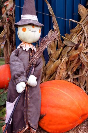 Halloween scarecrow decoration photo