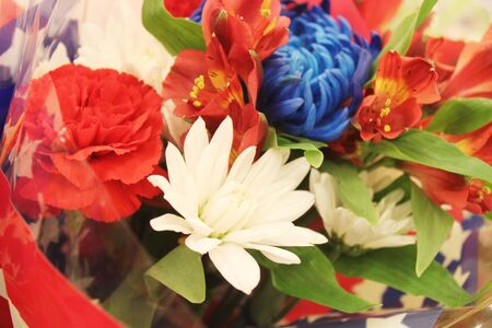 Assortment of red, white and blue flowers Stock Photo