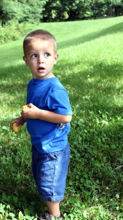 Cute little boy hunting Easter Eggs Stock Photo