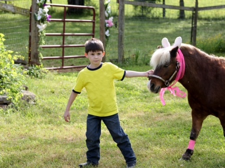horse laugh: Little boy with his pony decorated for Easter
