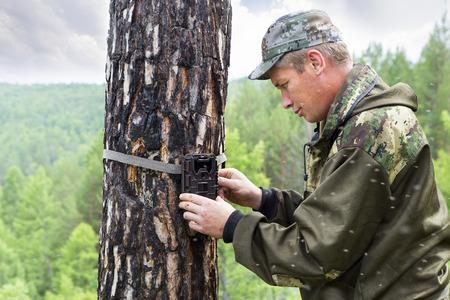 Armadilhas de câmera com luz infravermelha e um detector de movimento anexado por tiras em uma árvore fotografam animais na taiga da Sibéria. Foresters instala armadilhas de fotos em uma árvore para fotografar automaticamente ou gravar vídeos de animais selvagens na floresta. Foto de archivo