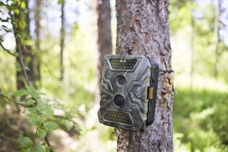 Cameravallen met infrarood licht en een bewegingsdetector die met banden aan een boom is bevestigd, fotograferen dieren in de Siberische taiga.