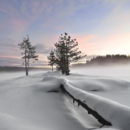 Winterliche Landschaft Nebel über gefrorenen See, umgestürzten Baum Vordergrund, Moody Himmel Lizenzfreie Bilder