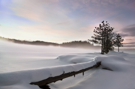 Wintry landscape   Mist over frozen lake, fallen foreground, moody sky