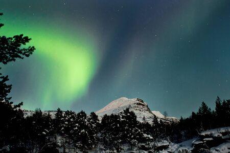 Aurora Borealis above forest and mountain. Captured near Skibon, Norway photo