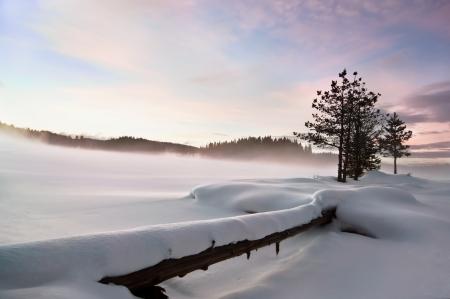 Mist over frozen lake, fallen foreground, moody sky