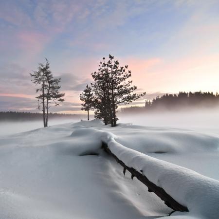 Mist over frozen lake, gefallen Vordergrund, moody sky