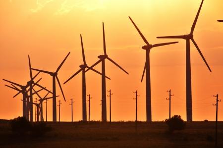 regenerating: Wind turbines in a row Stock Photo