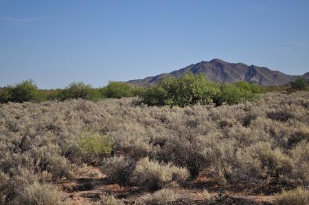 butte: Robbins Butte Wildlife Area