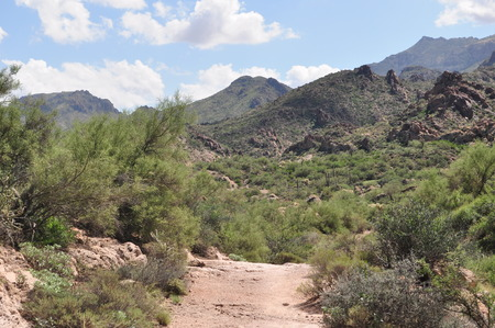 superstition: Superstition Mountain Trail