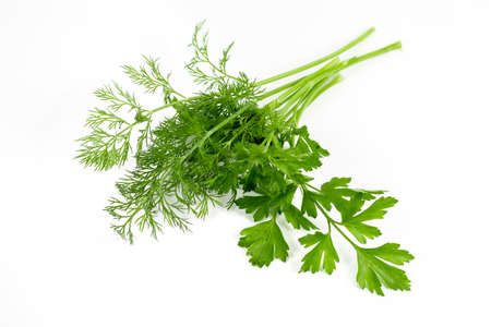 dill parsley to spices bunch isolated on white background.