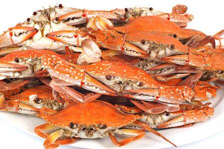 Steamed blue crab