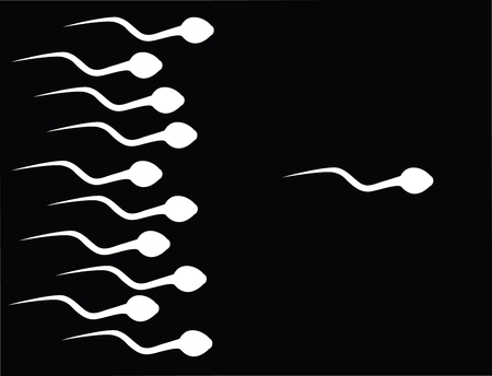 the catch sperm Stock Vector - 3429507