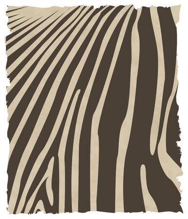 dobbin: vector zebra skin eps 8
