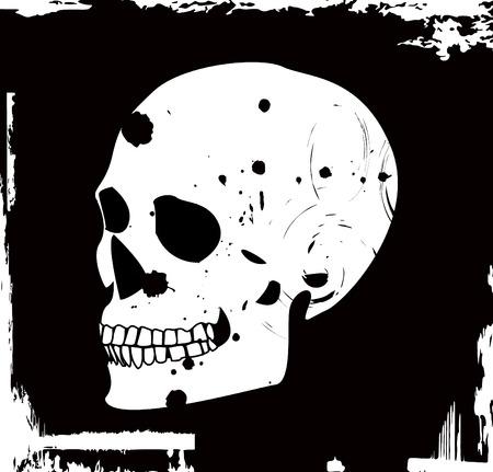 grunge vector skull Stock Vector - 3924997