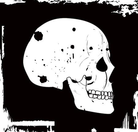 grunge vector skull Stock Vector - 3924996