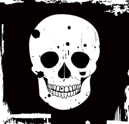 grunge vector skull Stock Vector - 3924999