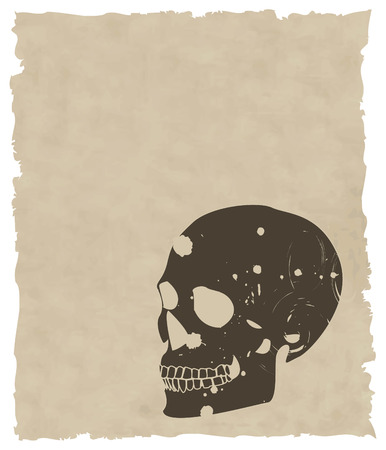 the brown vector grunge skull on old paper 8