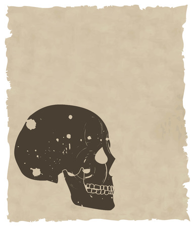 the brown vector grunge skull on old paper 8 Stock Vector - 4453654