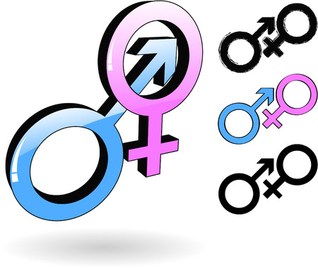 the vector male and female symbol Vector