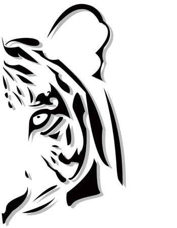 tigre blanc: la t�te de tigre abstraite