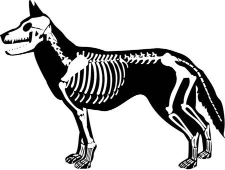 the Halloween   designs image  photo