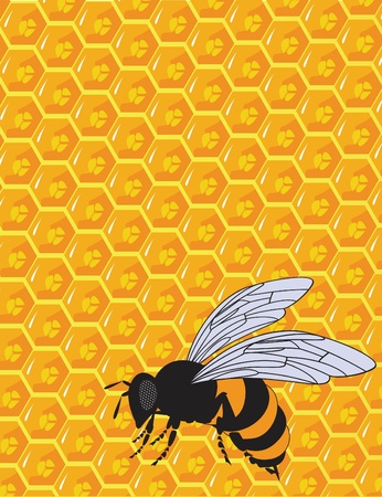 the vector orange and yellow honeycomb ornament photo