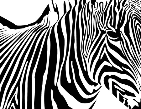 stripper: zebra