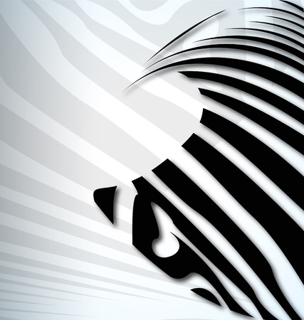 zebra abstract background with text Vector