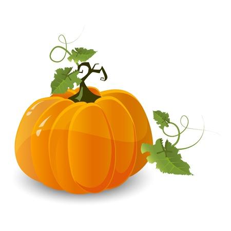 large skull: Halloween pumpkin