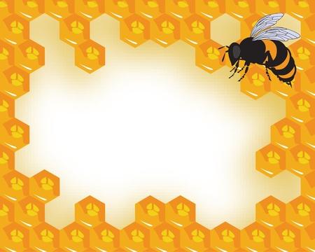 abejas panal: las abejas y panales con miel Vectores