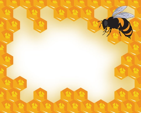 bee hive: the bees and honeycomb with honey