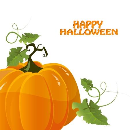 vector halloween pumpkin Vector
