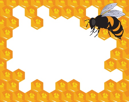 The bees and honeycomb with honey Vector