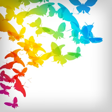 cool colors: Colorful Background with Butterfly - Vector Illustration Illustration
