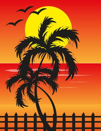 soir�e: Soir�e plage coucher de soleil fond Illustration