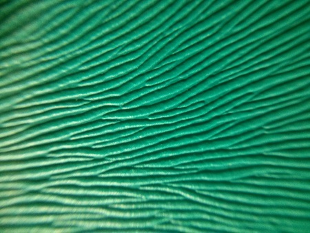 marco: marco green pattern Stock Photo